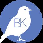 Logo Benthe Kuiper Multimedia Design en Illustraties