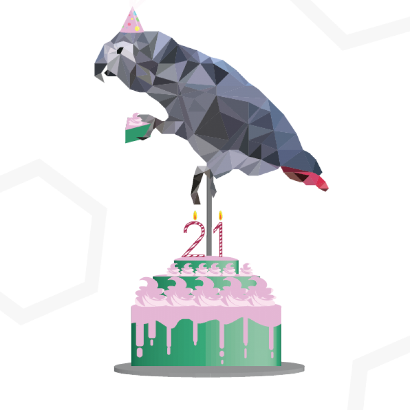 Grijze roodstaartpapegaai verjaardagskaart